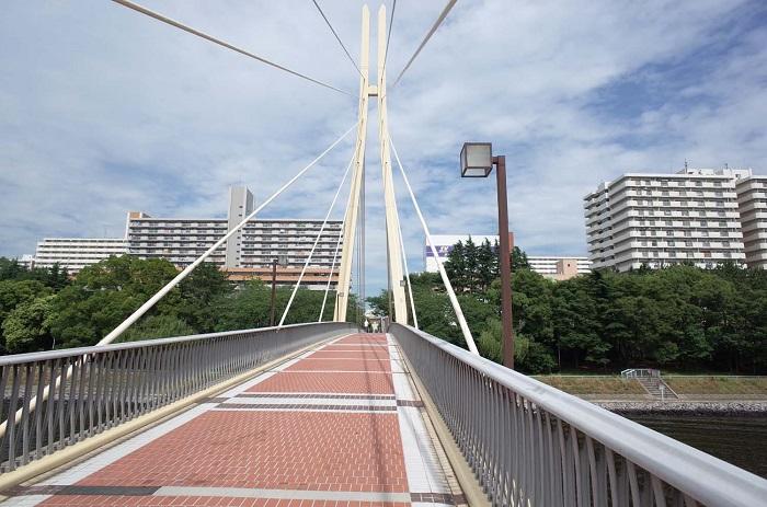 【東京リノ日和6】<まちとマンション探訪~八潮パークタウン>